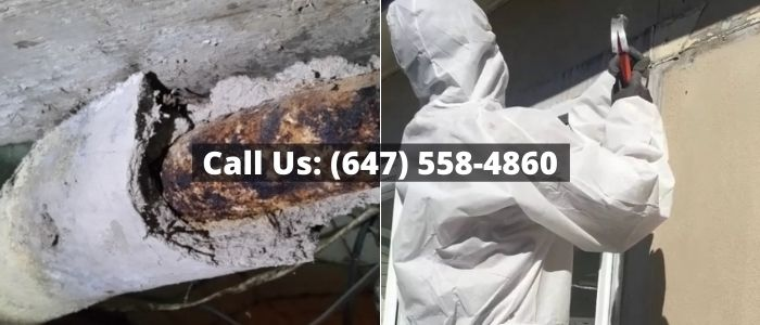 Asbestos Removal and Inspection in Orangeville