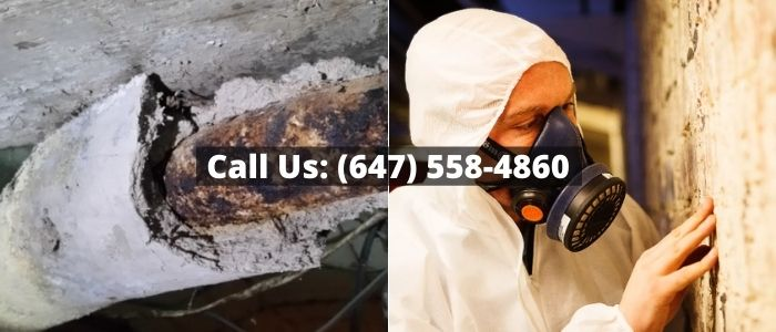 Asbestos Removal and Inspection in Ceiling
