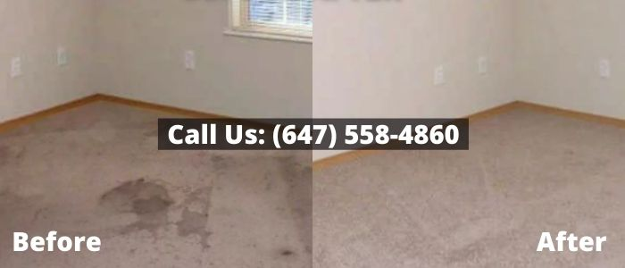 Ceiling Water Damage Restoration in Toronto